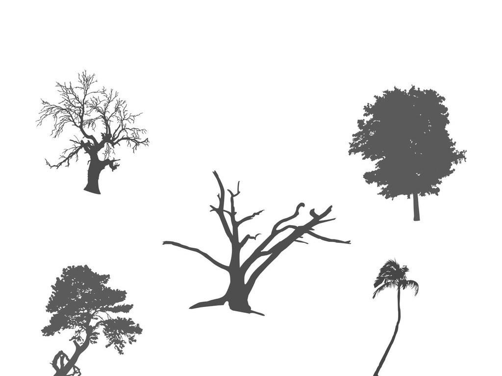 柏树矢量图片-最新柏树矢量图片大全   松树柏树松柏矢量素材行道树景