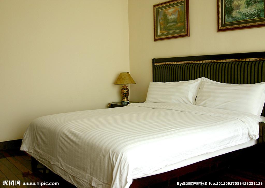 背景墙 房间 家居 酒店 设计 卧室 卧室装修 现代 装修 1024_728
