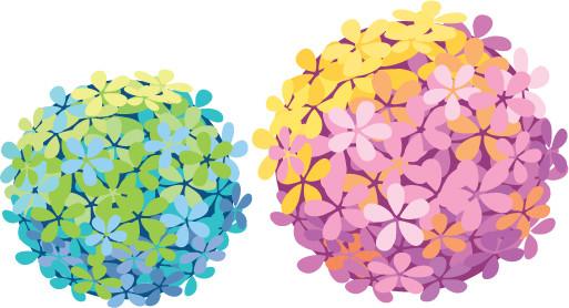 绣球花图片手绘粉色