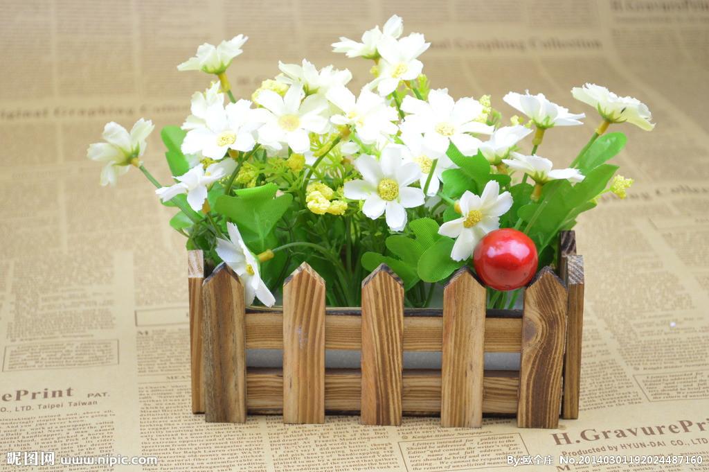 盆花图片-最新盆花图片大全