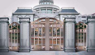 大门的图片-最新大门的图片大全_装修图片_新家优装