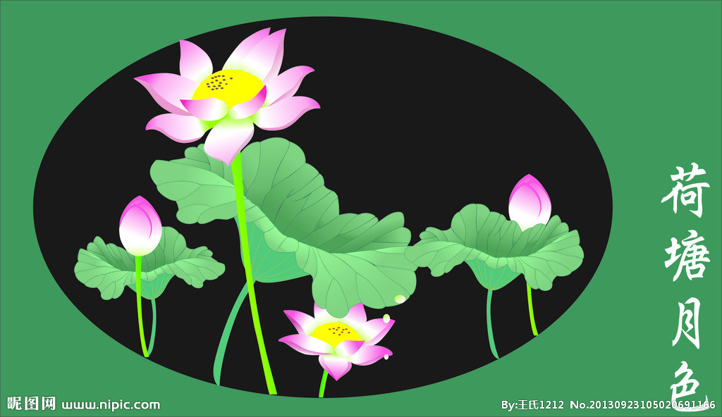 【荷花摄影图片】武汉东湖荷花园生态摄影 荷花插图矢量素材,植物花草